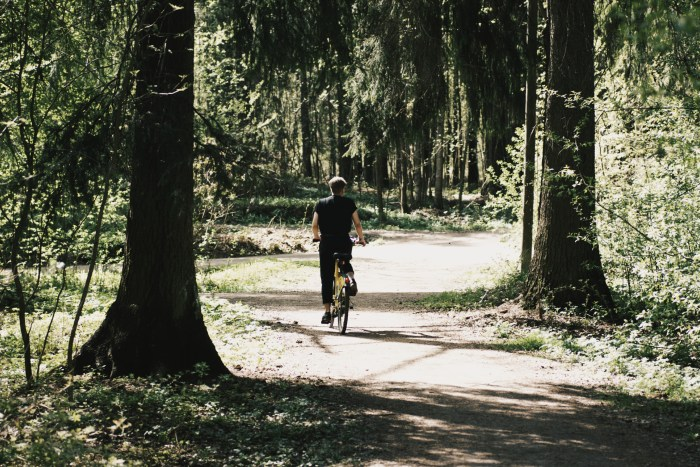 Daniel riding a city bike in the woods in the distance