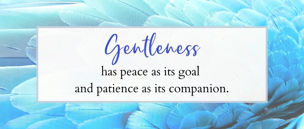 image of how to bring peace into your home - gentleness has peace as it's goal and patience as its companion.