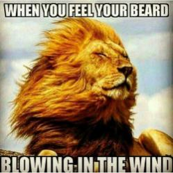 when-you-feel-your-beard-blowing-in-the-wind-meme