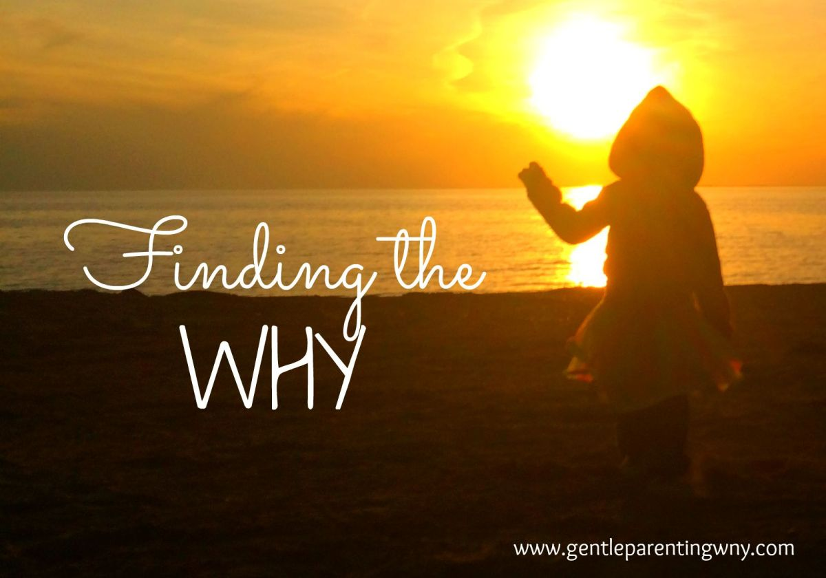 Finding the 'Why'