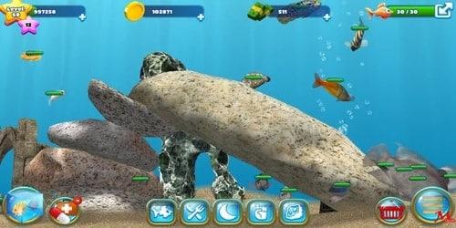Game Ikan Terbaik
