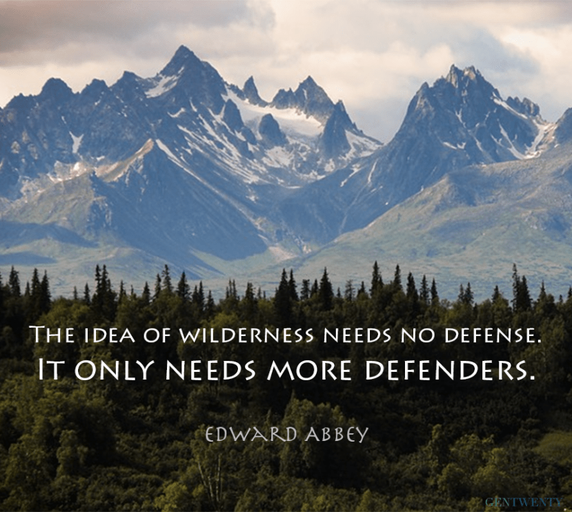 Quotes Nature Alluring 10 Nature Quotes That Will Inspire You To Get Outdoors  Gentwenty