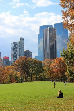 Finding Nature in Your City: Green Space Among Skyscrapers