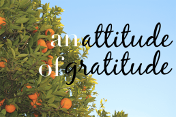 Having an Outlook That Conveys Gratitude