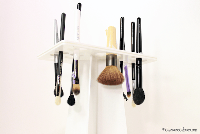 Benjabelle Daisy Brush Tree Review