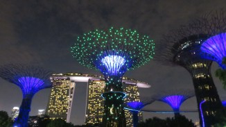 Supertrees by night - 7.45pm and 8.45pm