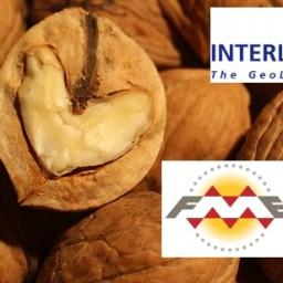 (H)Interlis(tig)