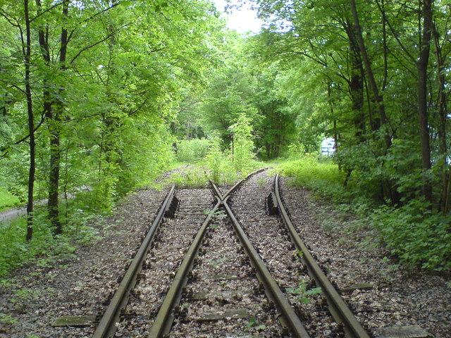 Bahngleise im Wald bei Bblingen MGRS 32UNU0390