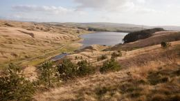View from GC2EHXG , the South Pennine Moors