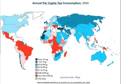 Tea Consumption Worldwide