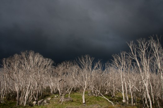 Image of storm over Western's Hut, Bogong High Plains