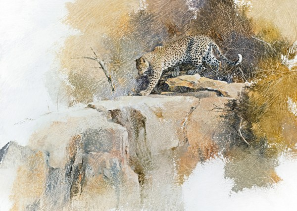 South African Wildlife Artist Geoff Hunter Art