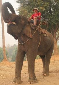 Geoff on a Elephant