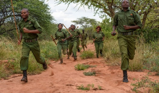 Wildlife works rangers on the go. These rangers were featured in Ivory Wars and protect the environment.