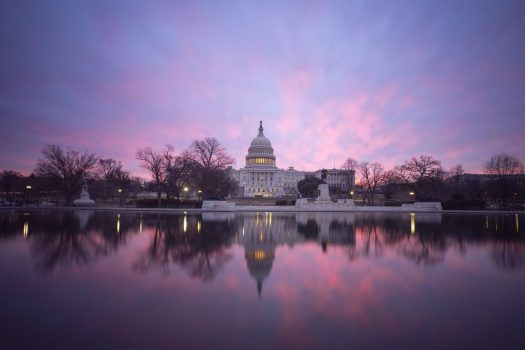 The U.S. Capitol Building by Angela Pan