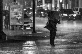 Rain, monochrome.