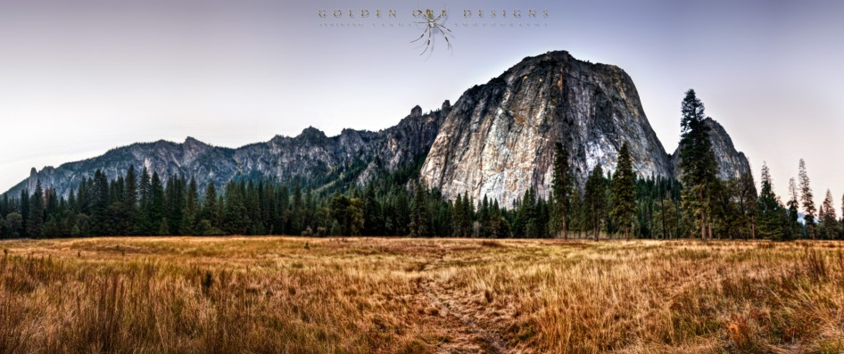 Standing-Tall-Yosemite