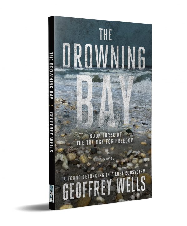 The Drowning Bay cover