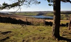 Druid's view to Leighton