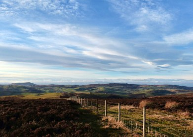 Fence and Stiperstones