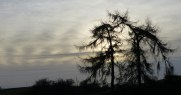 Munslow skyline