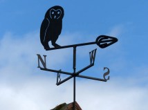Weather-vane wisdom