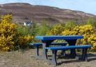 A perfect picnic place