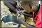 Young Moses shelling g nuts (peanuts). A staple diet.