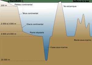 Commons Wikimedia: Estructura del relieve submarino