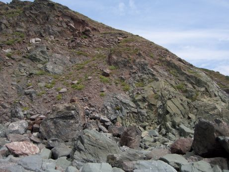 View of a gently sloping cliff formed from hard but very fractured and broken rock