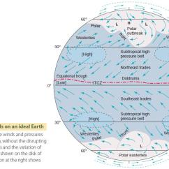 Global Wind Patterns Diagram Respiratory System Without Labels And Pressure Surface Winds On An Ideal Earth