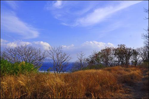 7 Stepa Padang Rumput  geographyeducation