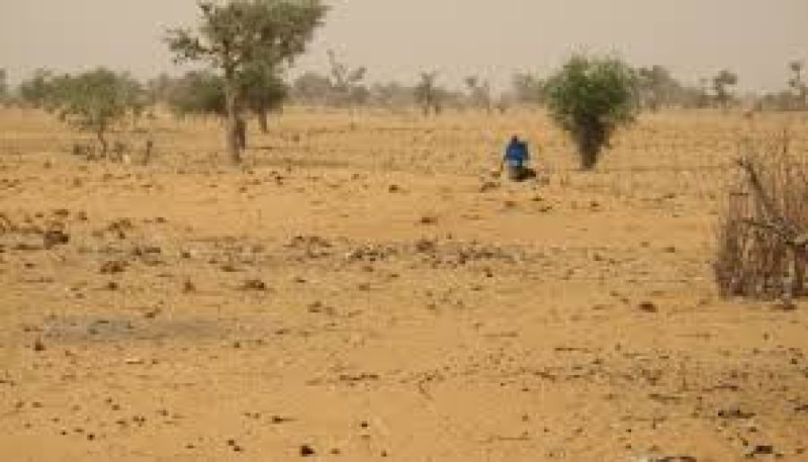 Image result for desertification in africa