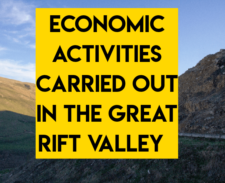 Economic activities carried out in the great rift valley