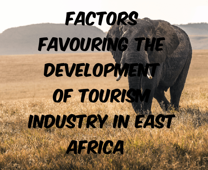 Factors for development of tourism industry in East africa