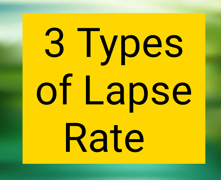 Types of lapse rate
