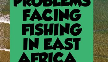 Problems facing fishing industry in East Africa