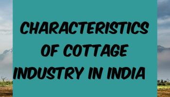 Characteristics of cottage industry in India