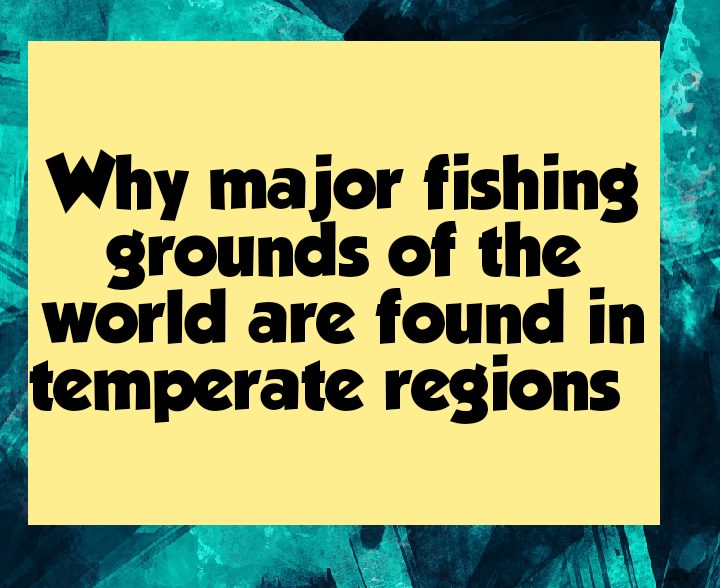Why major fishing grounds of the world are located in temperate regions
