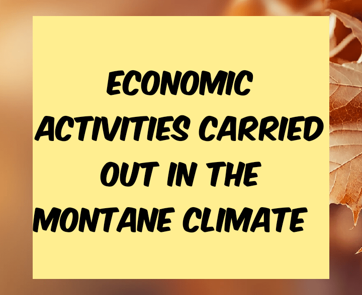 Economic activities carried out in Montane climate