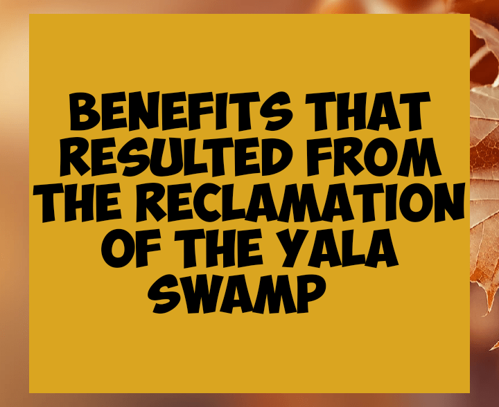 Benefits that resulted from the reclamation of the yala swamp