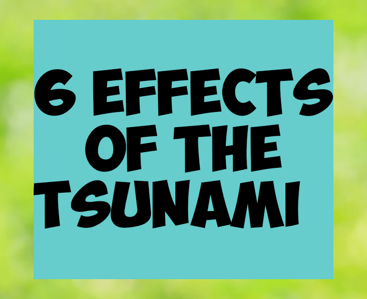 6 effects of the tsunami