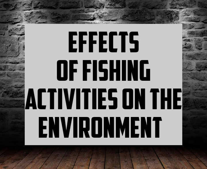 Effects of fishing activities on the environment