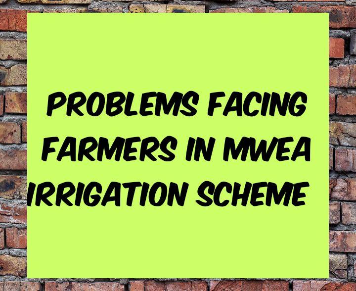 Problems facing farmers in mwea irrigation scheme