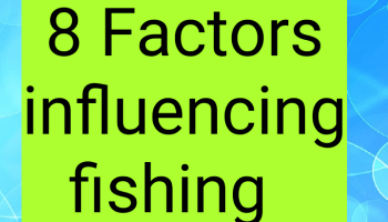 8 factors influencing fishing INDUSTRIES