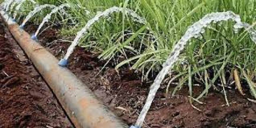 The following conditions that made Mwea suitable for the establishment of an irrigation scheme