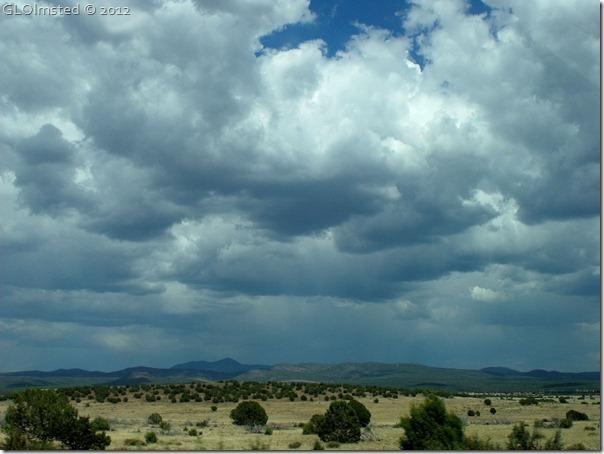 01e Rain clouds build east of Ashfork from SR89 S AZ (1024x768)
