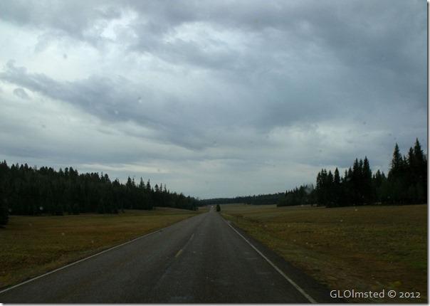 14ecr Stormy sky over meadows SR67 S NR GRCA NP AZ (1024x768)