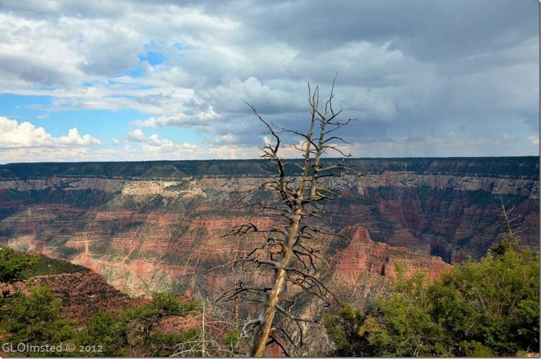 01 View NE over Roaring Springs Canyon & Walhalla Plateau BAP trail NR GRCA NP AZ (1024x678)