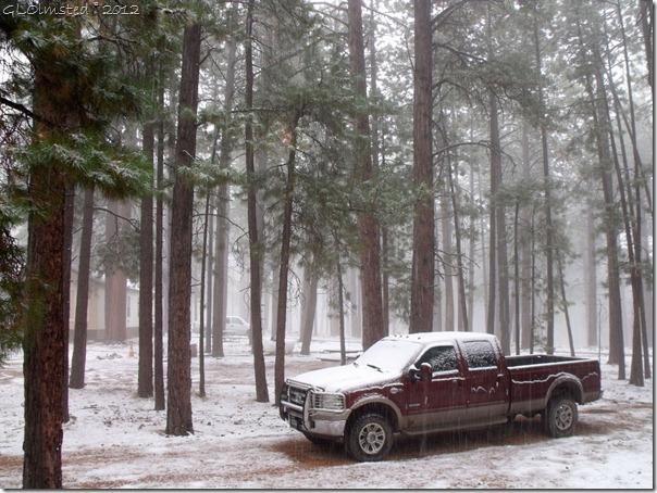 01 Snowing NR GRCA NP AZ (1024x768)
